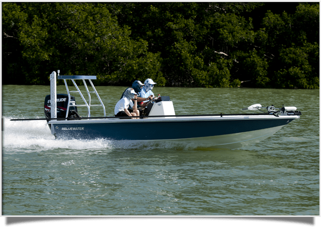 Bluewater Inshore Models